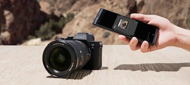 Ảnh của Máy ảnh full-frame 35 mm α7R IV với độ phân giải 61,0 MP