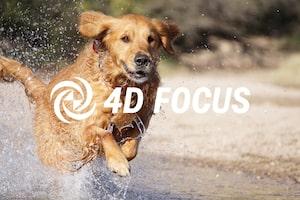 Hướng dẫn Cài đặt Máy ảnh LẤY NÉT 4D