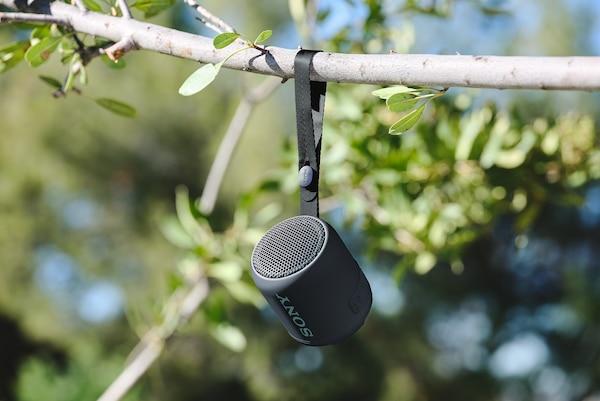 SRS-XB12 treo lên cành cây bằng dây đeo